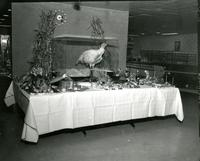 Decorative Thanksgiving table setting with taxidermied turkey, Illinois Institute of Technology, ca. 1970s