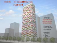 Design of a Large Scale Structure (Semester Unknwon) IPRO 315: DesignOfALargeScaleStructureIPRO315FinalPresentationSp09
