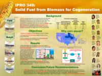 Solid Fuel from Biomass for Cogeneration (Semester Unknown) IPRO 349: Solid Fuel from Biomass for Cogeneration IPRO 349 Poster1 Sp08